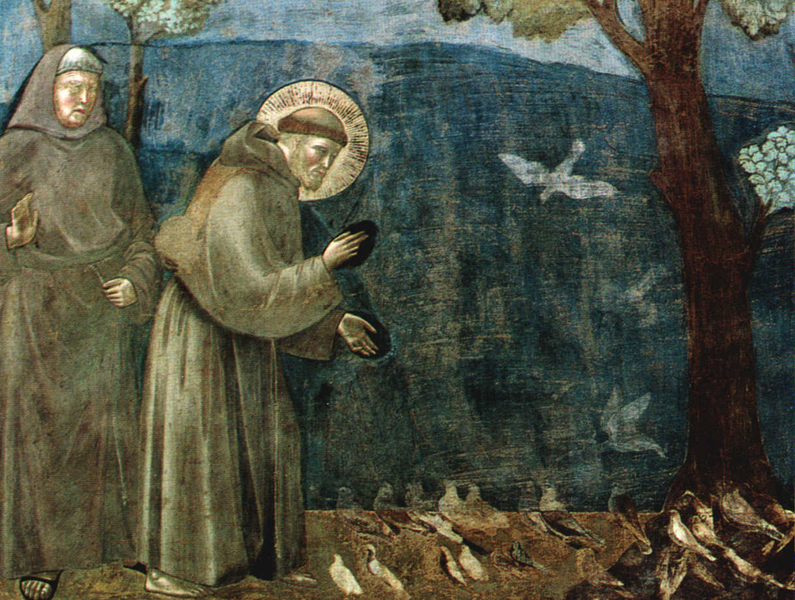 Giotto- San Francesco predica agli uccelli