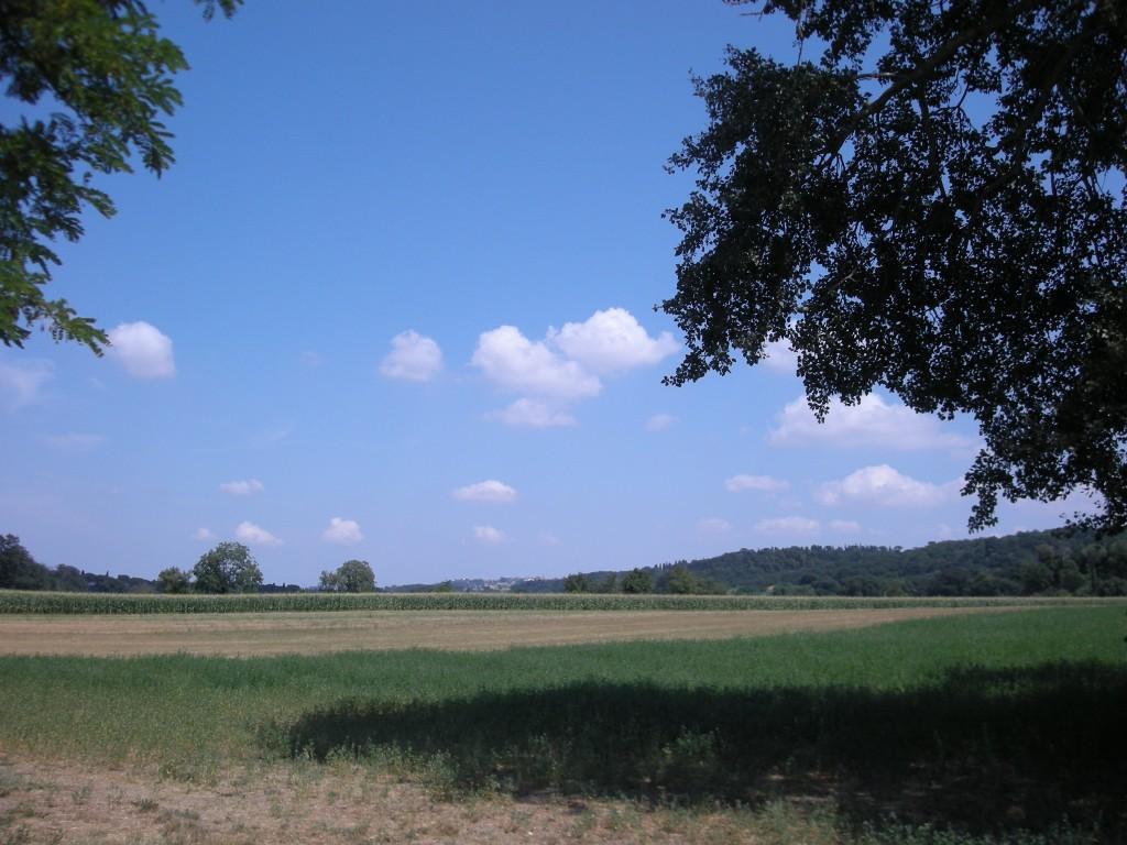 luglio2008 140